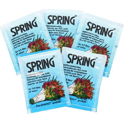 Hrana pentru flori taiate Spring 20plicurix5gr